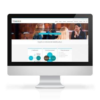 Website Triangis